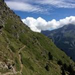Trails vom Allerfeinsten...